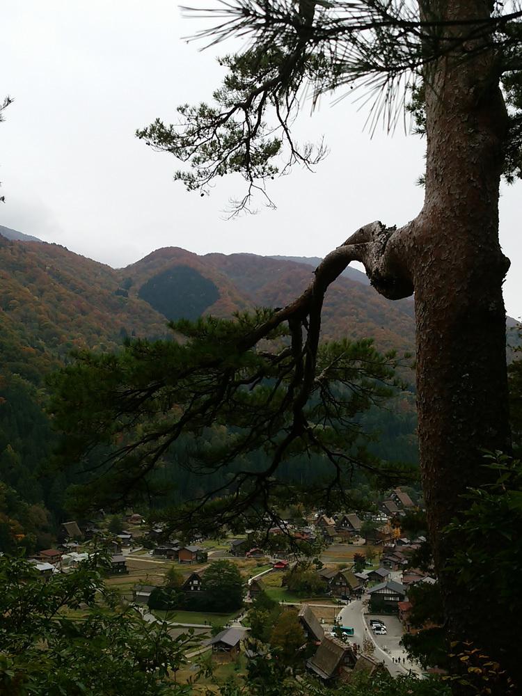 世界遺産白川郷の秋を楽しむやすらぎの旅行2