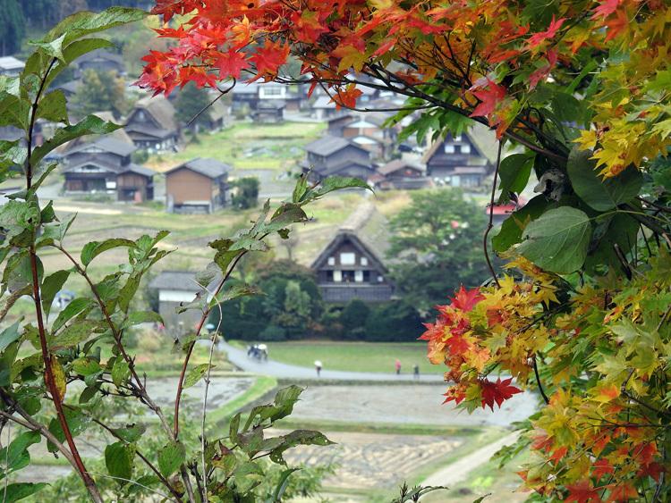 世界遺産白川郷の秋を楽しむやすらぎの旅行7