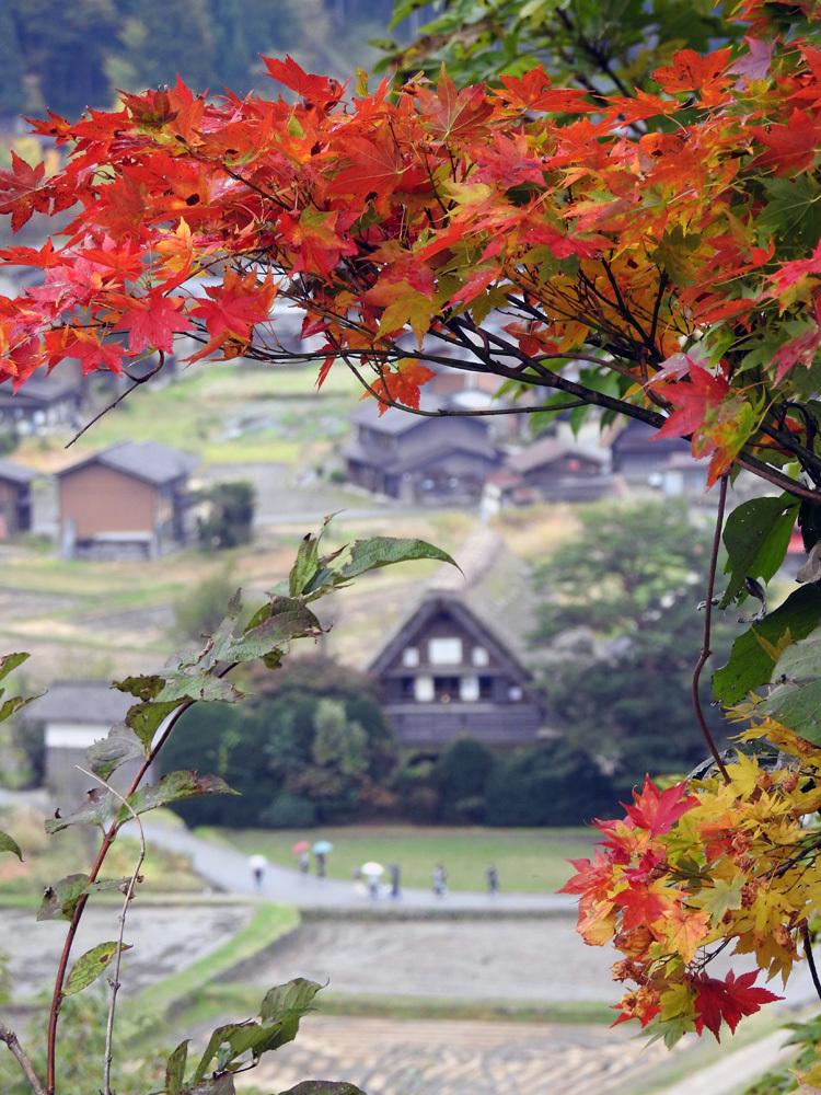 世界遺産白川郷の秋を楽しむやすらぎの旅行8
