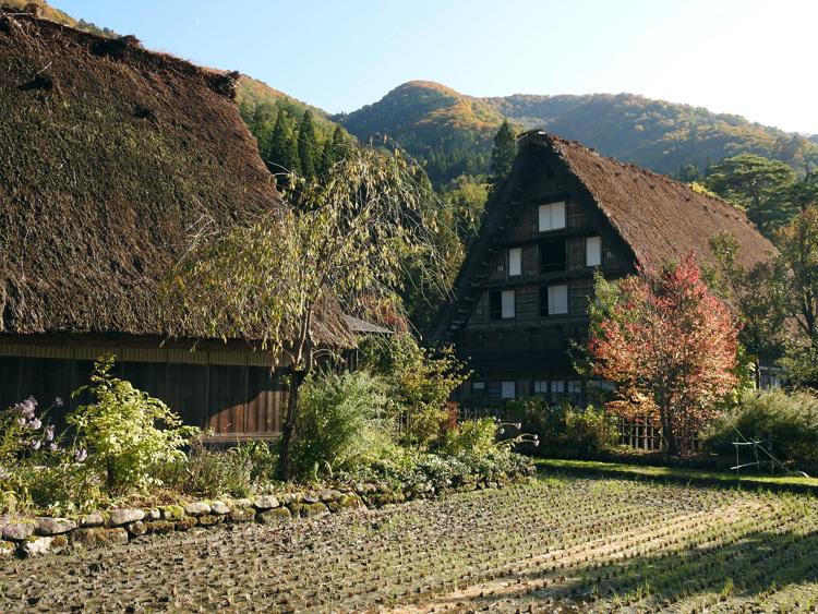 世界遺産白川郷の秋を楽しむやすらぎの旅行11