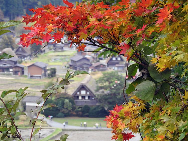 11月の3連休 紅葉の色づき 肌寒くなってくる季節 白川郷で満喫7
