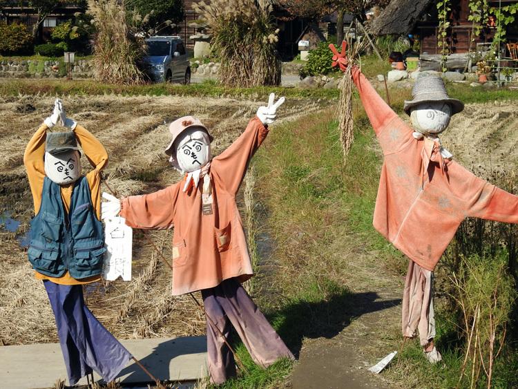 11月の3連休 紅葉の色づき 肌寒くなってくる季節 白川郷で満喫8