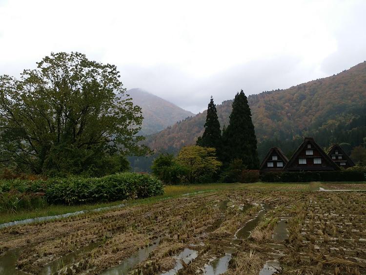 11月の3連休 紅葉の色づき 肌寒くなってくる季節 白川郷で満喫10