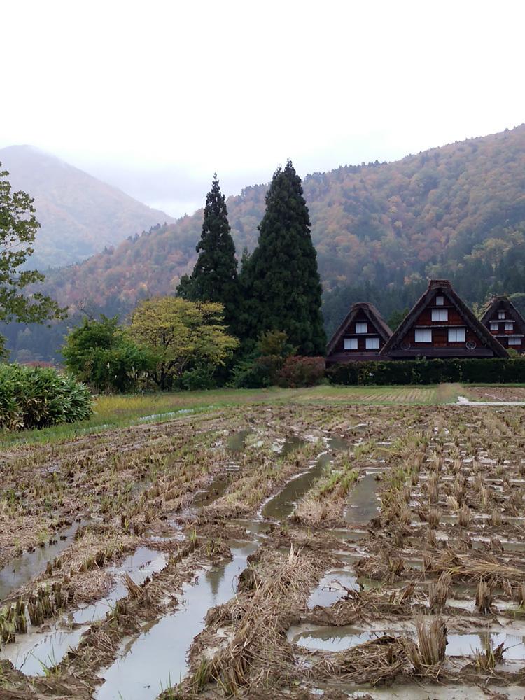 11月の3連休 紅葉の色づき 肌寒くなってくる季節 白川郷で満喫12