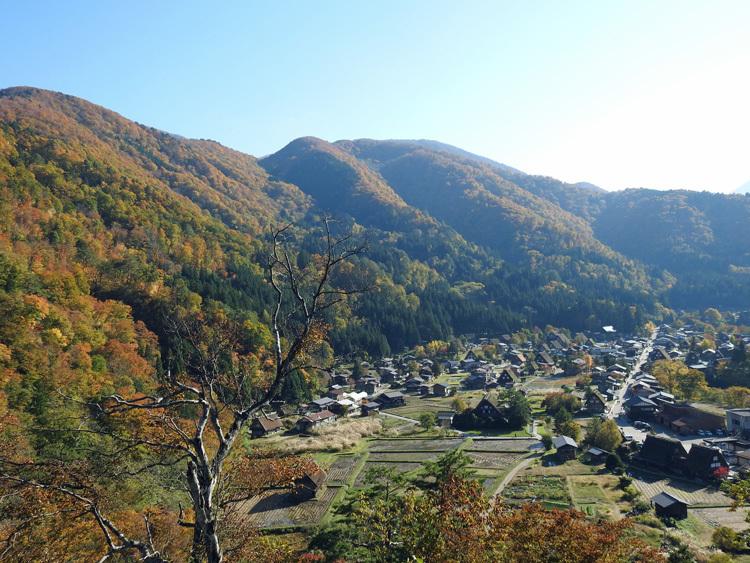 秋晴れの ハロウイン 世界遺産白川郷5