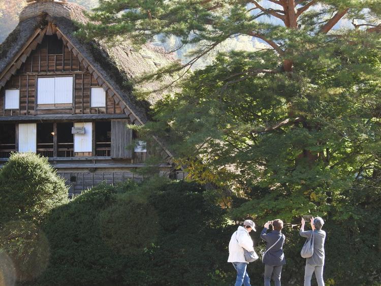 秋晴れの ハロウイン 世界遺産白川郷7