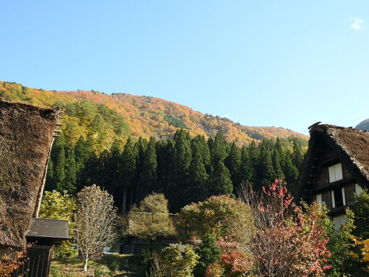 秋晴れの ハロウイン 世界遺産白川郷9