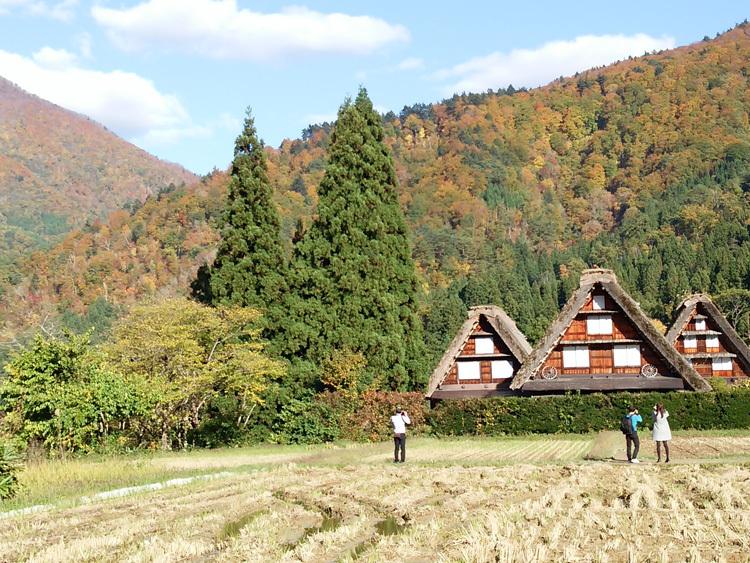 秋晴れの ハロウイン 世界遺産白川郷10