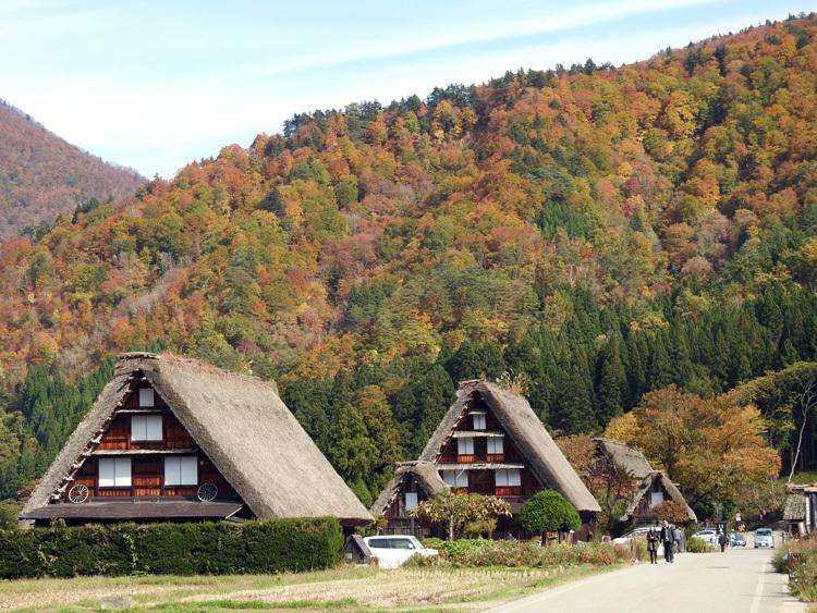 文化の日3連休(11月3-5日)見頃の紅葉を楽しもう1