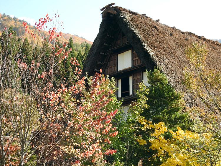 文化の日3連休(11月3-5日)見頃の紅葉を楽しもう12