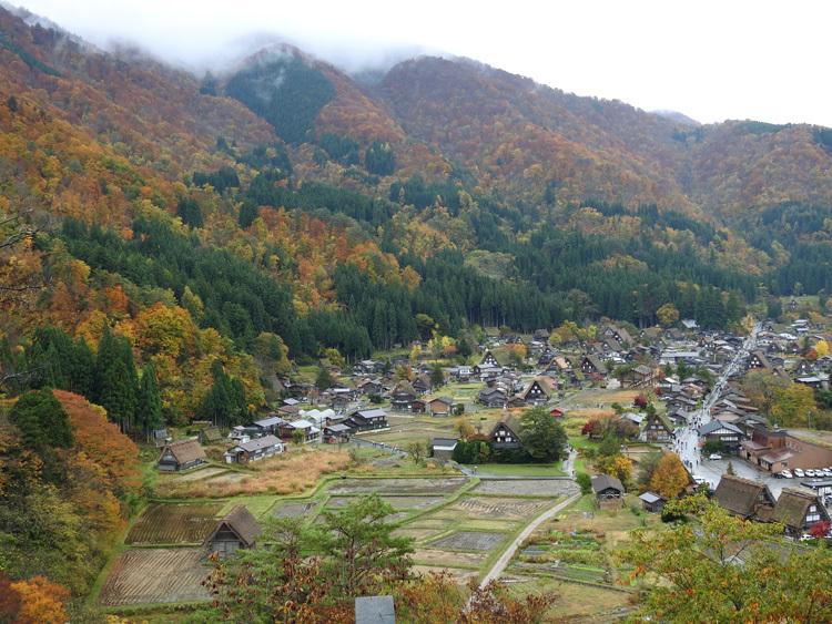 山頂から麓へと紅葉の色彩が下がってピーク2