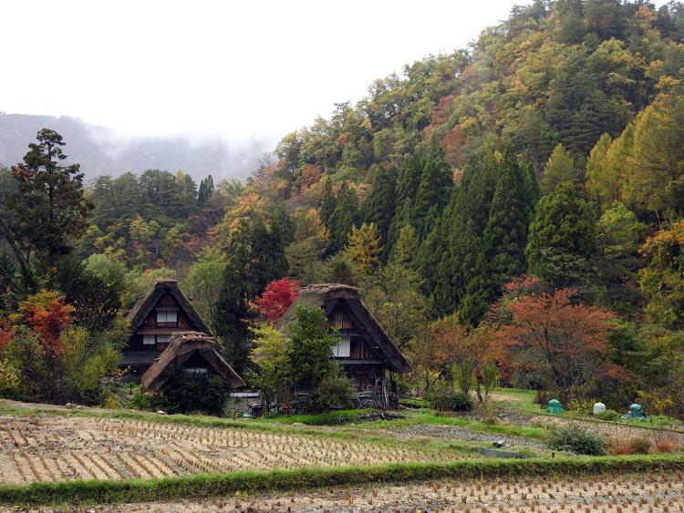山頂から麓へと紅葉の色彩が下がってピーク6