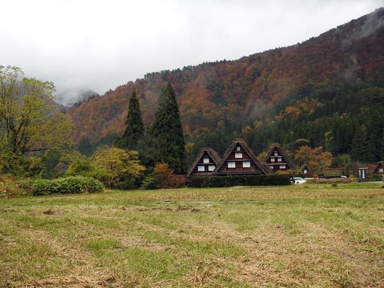 山頂から麓へと紅葉の色彩が下がってピーク7