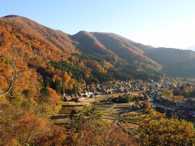 白川郷 紅葉も落葉が少しずつ進み、冬の足音が…6