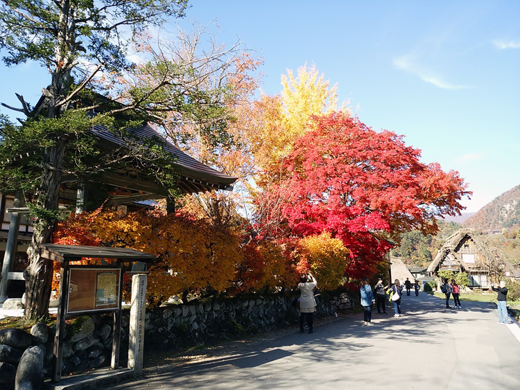 秋から冬へと移り行く白川郷の景色も3