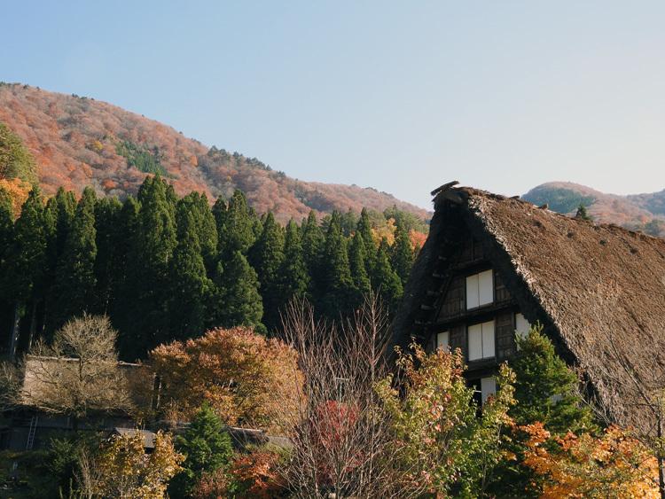 秋から冬へと移り行く白川郷の景色も4