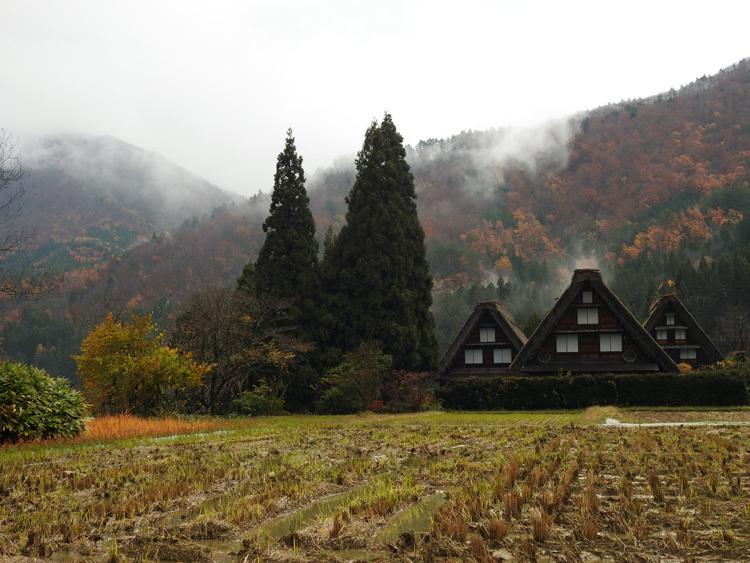晩秋の冷雨降る白川郷7