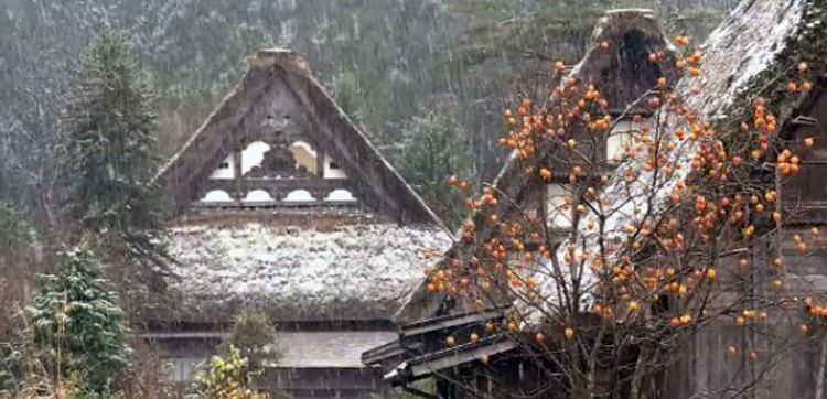 白川郷 本日初雪4