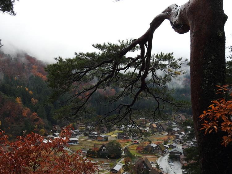 白川郷 本日初雪8