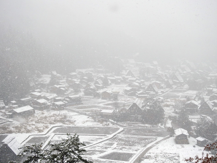 今日は湿った雪が降っており、視界が。。白川郷2