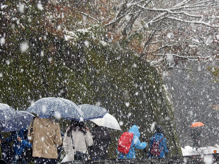 今日は湿った雪が降っており、視界が。。白川郷3