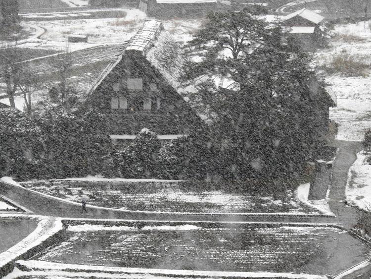 今日は白川郷へ! 雪もあり、最高2