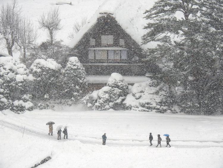 今季初のまとまった雪が降り、白い世界に包まれた白川郷7