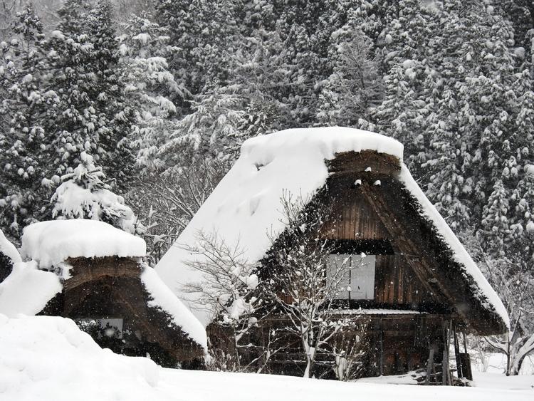 今季初のまとまった雪が降り、白い世界に包まれた白川郷9