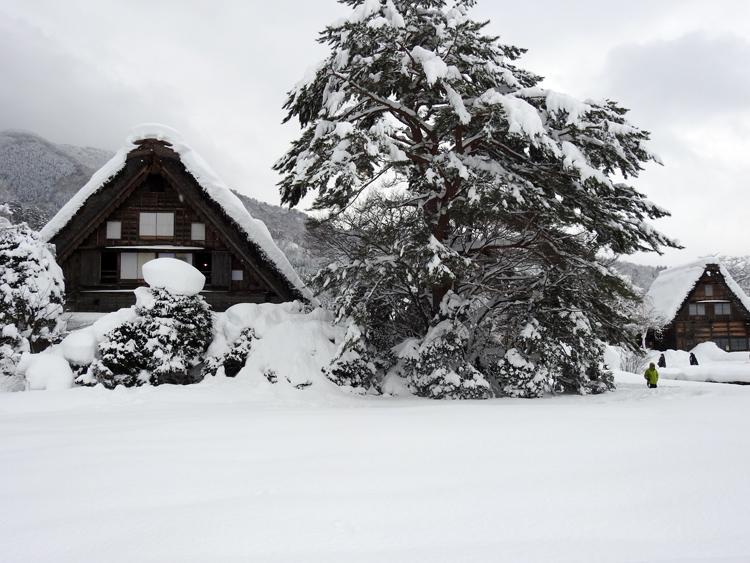 雪景色の綺麗な所に旅行したい白川郷3