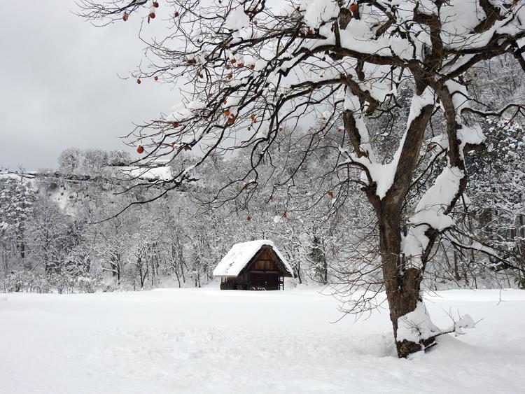 雪景色の綺麗な所に旅行したい白川郷5