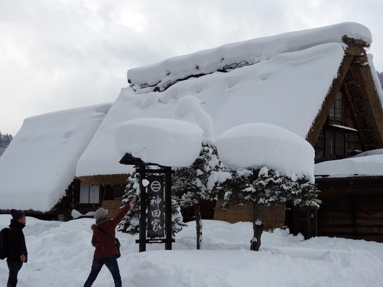 雪景色の綺麗な所に旅行したい白川郷6