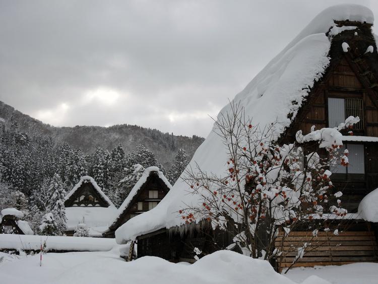 雪景色の綺麗な所に旅行したい白川郷8