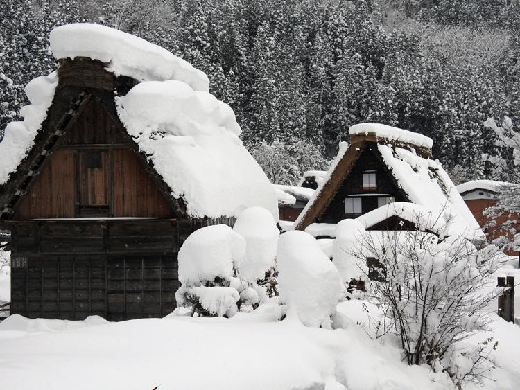 今日は、最近の寒さに比べると暖かい白川郷5