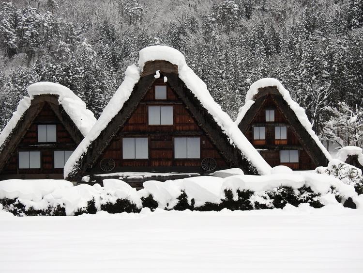 今日は、最近の寒さに比べると暖かい白川郷10
