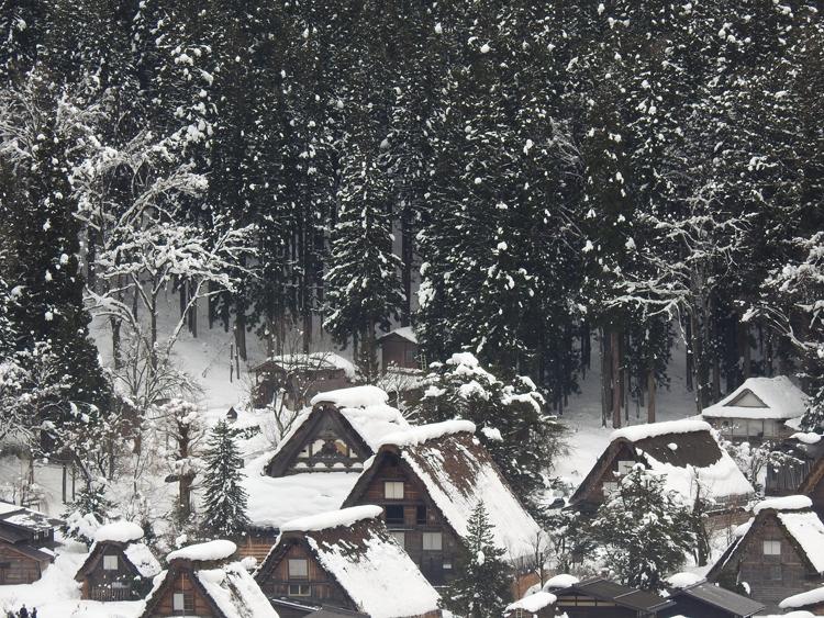 世界遺産「白川郷」の荻町合掌造り集落があるので、スキーを楽しんだ後に、のんびり観光2