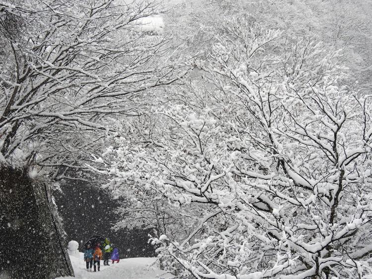 雪が降って来て ようやく冬らしい風景 白川郷2