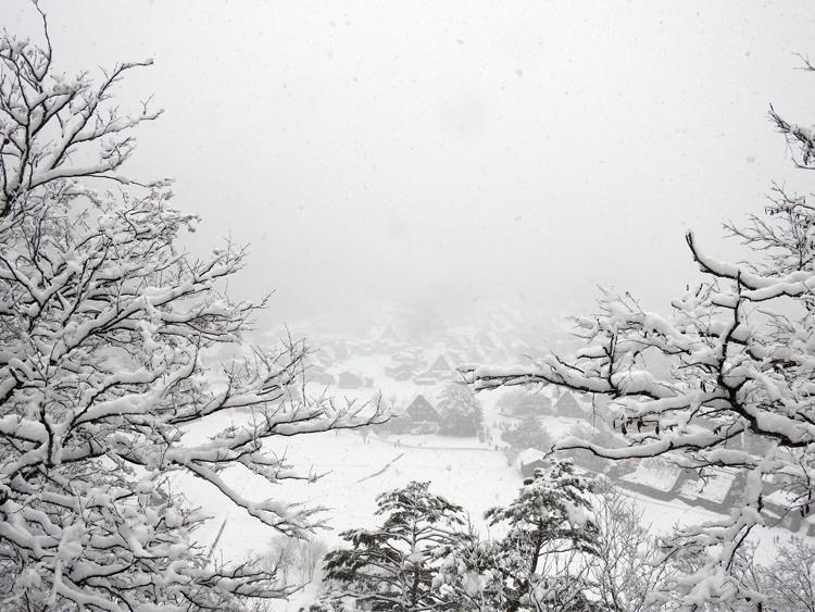 雪が降って来て ようやく冬らしい風景 白川郷5