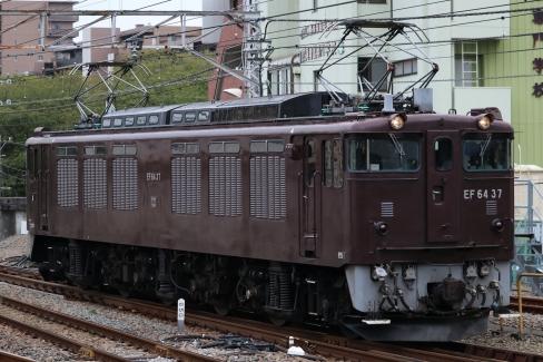 EF64 37