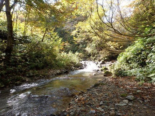 10.26赤沢川 072_R