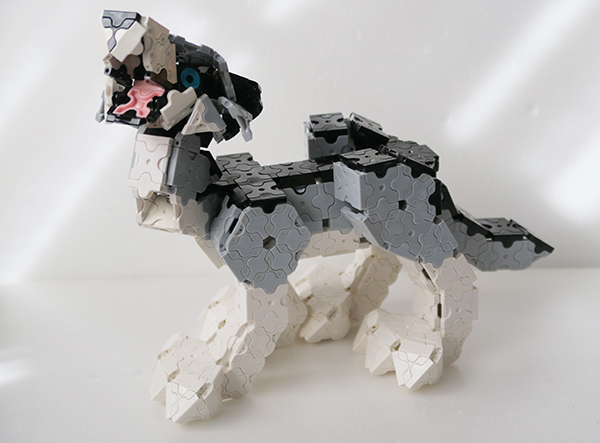 Gray_wolf02.jpg
