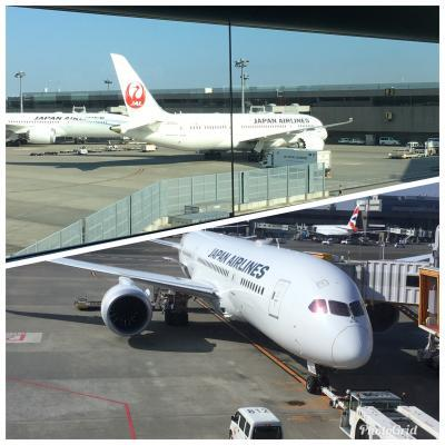 JAL11/26 1