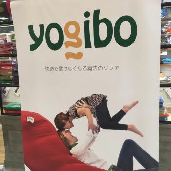 yogibo10/26 1