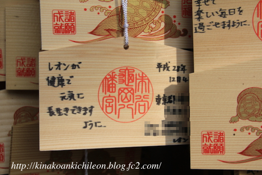 171123 Shichigosan 8