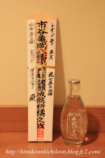171123 Shichigosan 13