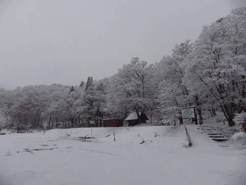 171206 森林公園1