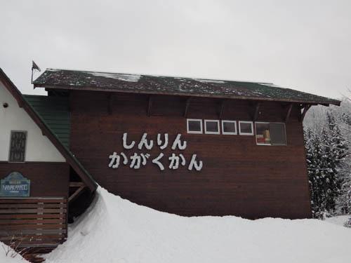 171219 今朝の森林科学館