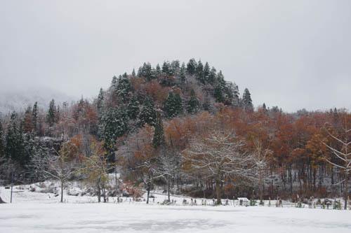 171124中ノ沢渓谷森林公園4