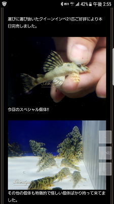 Screenshot_20171029-145514.png
