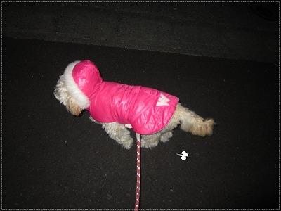 夜のお散歩&お試し品2