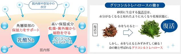 米肌 水分吸収